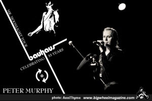 Poster from Murphy's recent tour which ends in Wellington December 15 2013