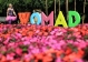 Womad-2016