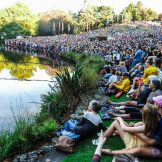 Womad crowd Shot
